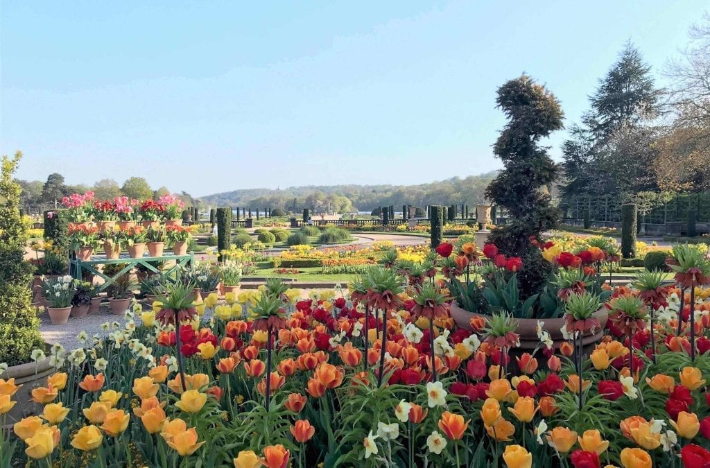 Trentham Estate to Launch a Range of Initiatives