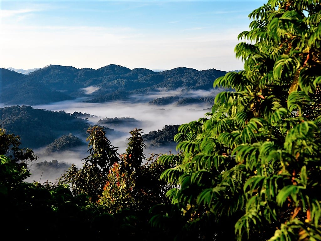 Rwanda is known as the land of a thousand hills
