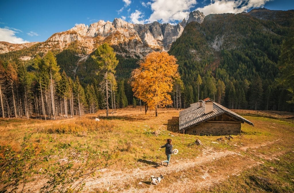 Savour the Many Autumn Walks in Trentino