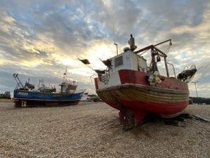 Hastings fish