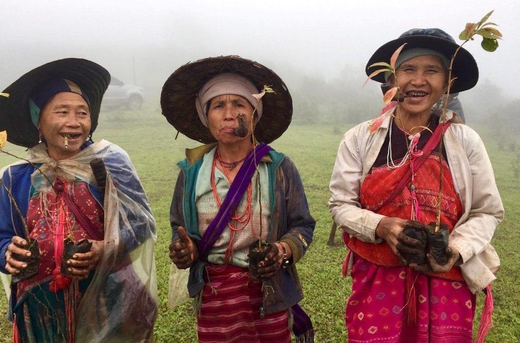 Tuk Tuk Cub Community-Based Tourism Award