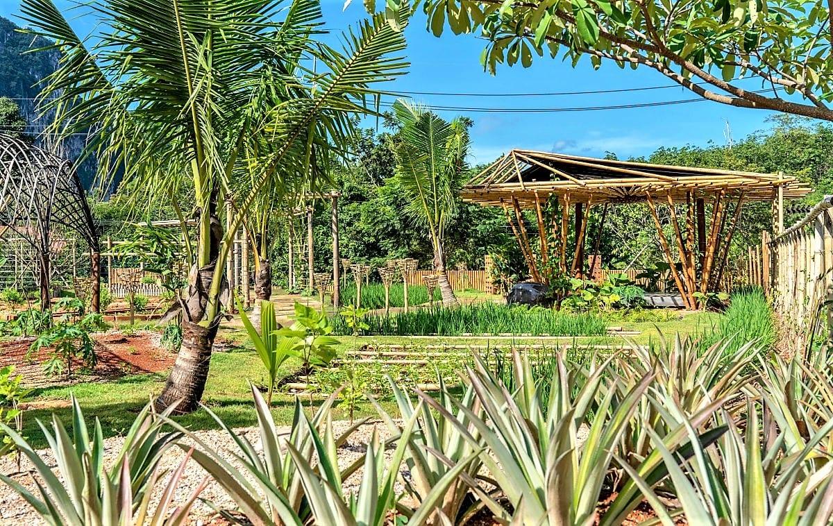 The Pavilions Anana Krabi Farm