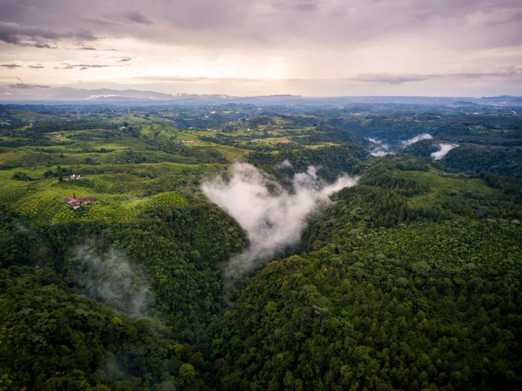 Colombia's Coffee Region Cultural Landscape