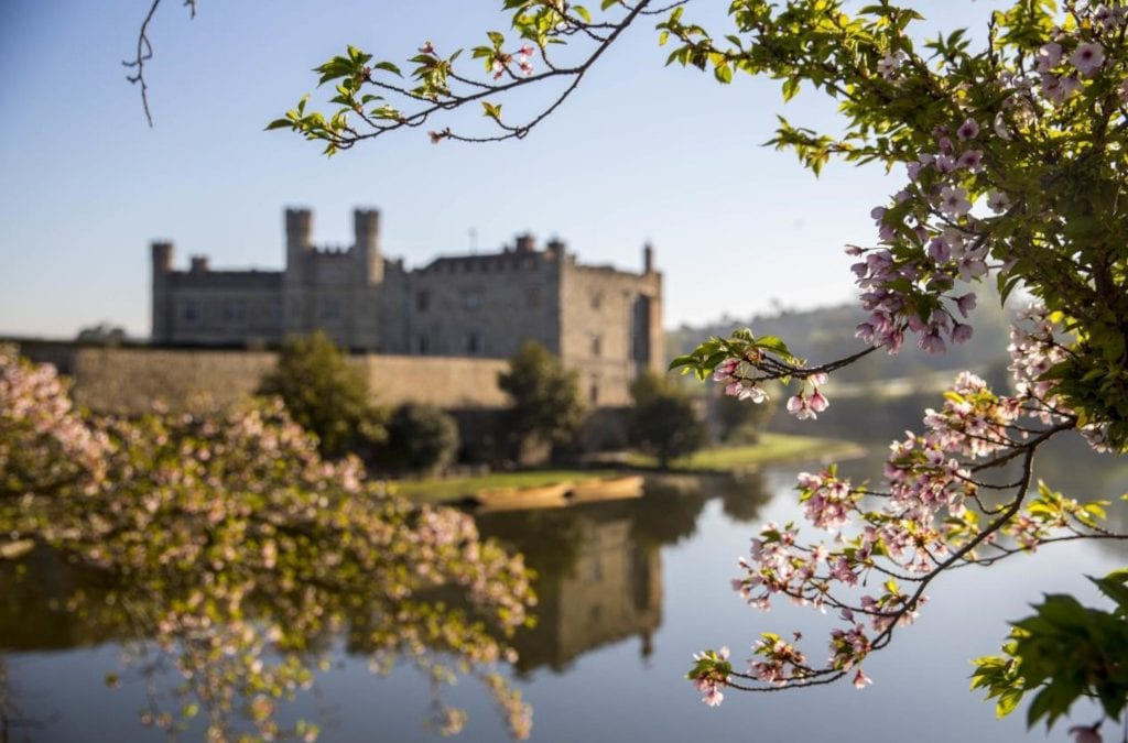 Japan's Blossoming Legacy to Leeds Castle