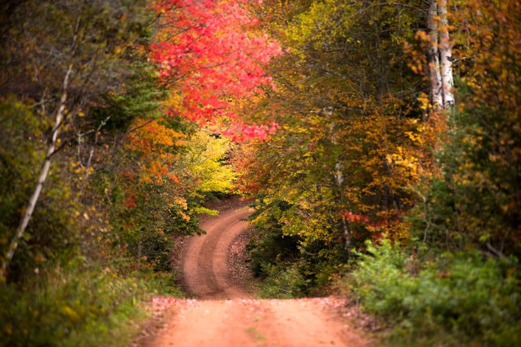 Autumn Scenic Road Queens County ©TourismPEI / Brian McInnis