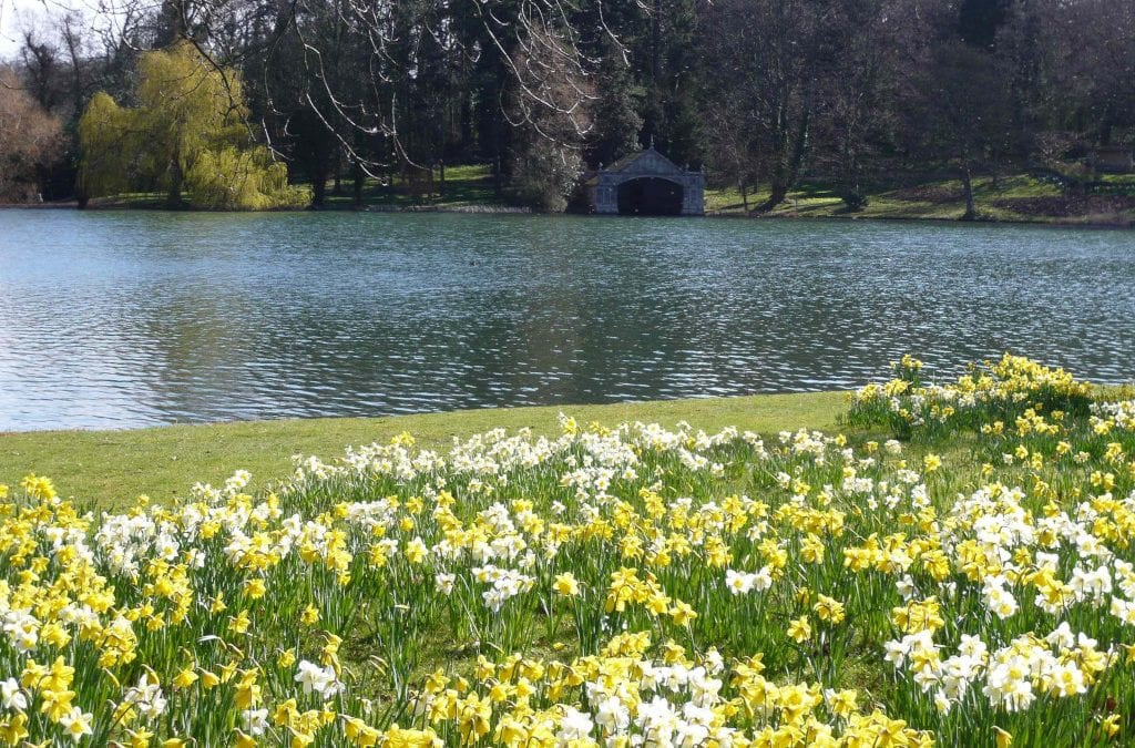 Welcome Back Burghley Blooms for 2021