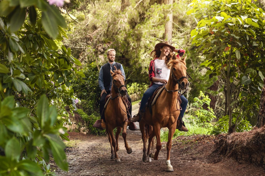 Or explore the country on horseback ProColombia