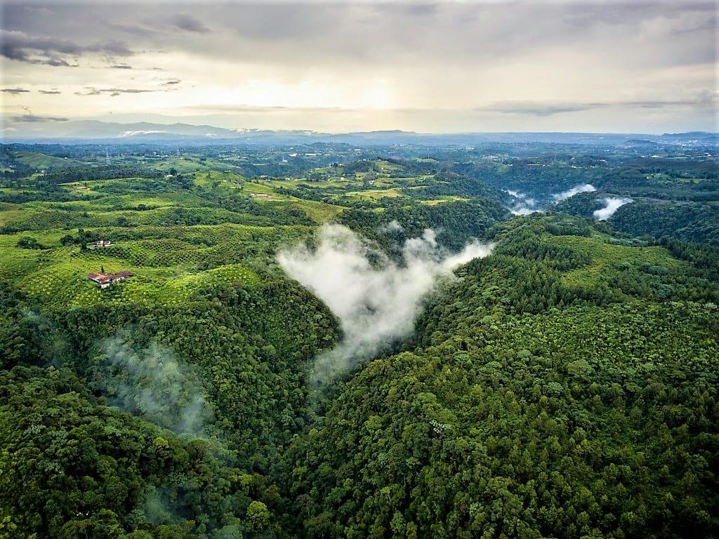 Explore Colombia's Coffee Region