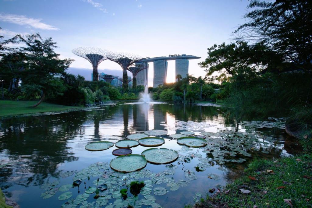 Singapore Green Plan