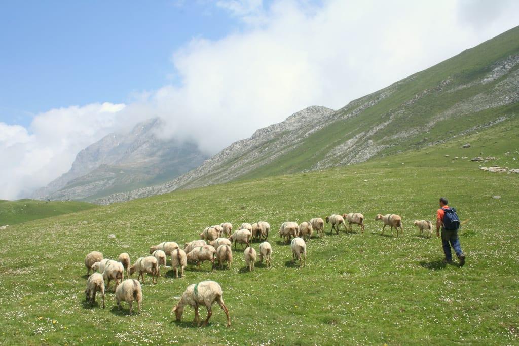 Aliva praries in the Valdeon valley