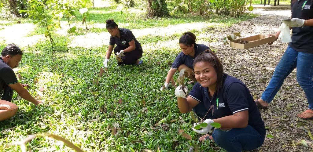 Anurak Lodge's Rainforest Rising project