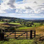 Walking East Yorkshire Festival