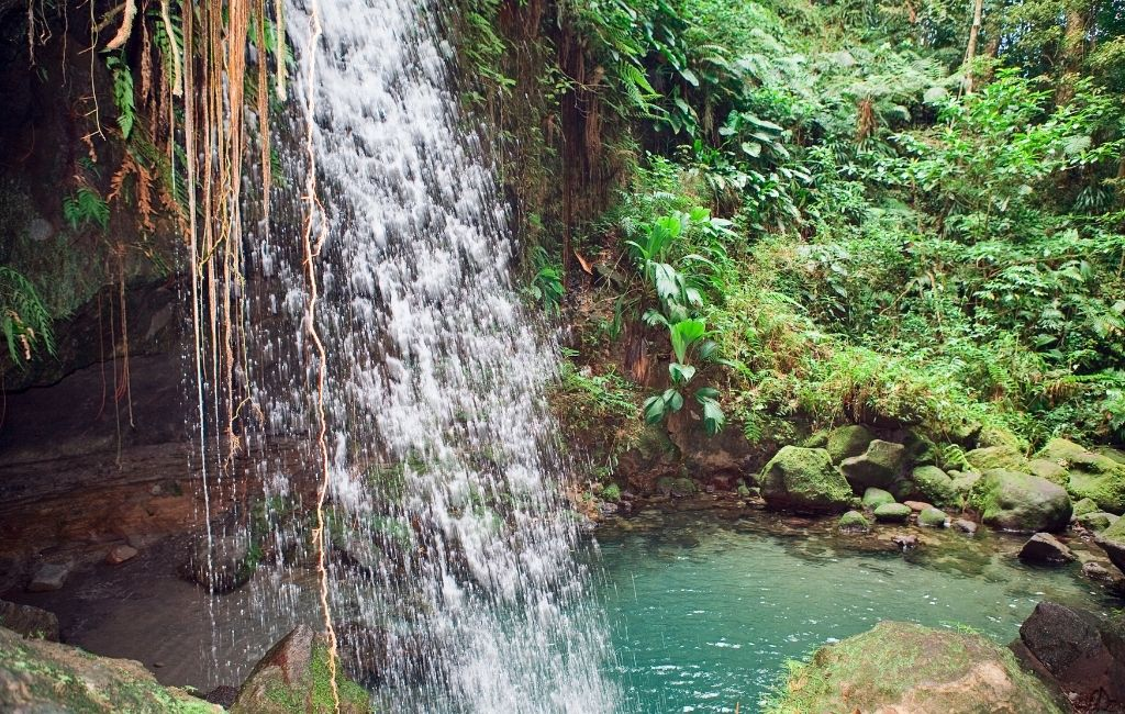 Dominica Holidays