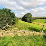 Hockney Country Yorkshire Wolds Hockney Trail